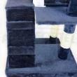 Ansamblu de joacă pentru pisici BELLA H2 - Albastru-alb